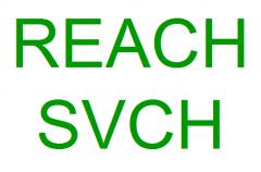 ECHA发布邻苯二甲酸酯授权程序指南